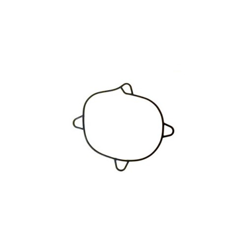 Уплотнител. кольцо VP DPH (R) - A, B